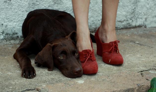 Amelie + shoes